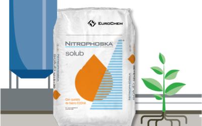 NITROPHOSKA® solub, υδατοδιαλυτά λιπάσματα για μέγιστη απόδοση από τη EUROCHEM